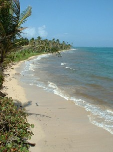 Copy of Casa beach